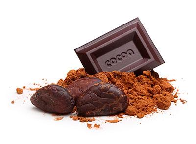 bittersweet cocoa